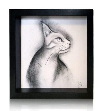 Dibujo De Gato A Lápiz Y Carboncillo